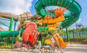 vui-choi-tha-ga-tai-cong-vien-nuoc-aquatopia-water-park